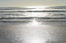 Pismo Beach Sand Dune Area