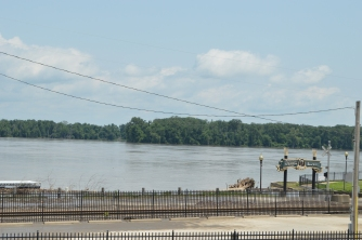 Levee view of the river