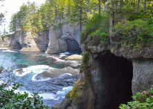 The Tidal Caves