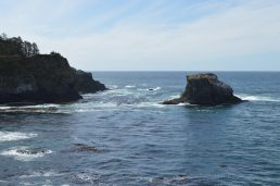 Pacific side of Cape Flattery